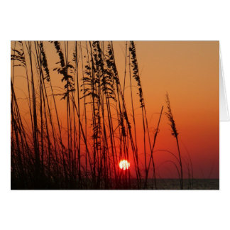 Perfekter Sonnenuntergang Grußkarte