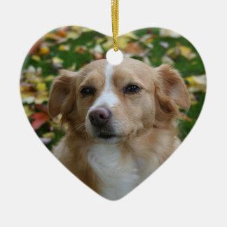 Personalisierte HundeFoto-Wort-Kunst Keramik Ornament