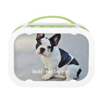 Personalisierter Bulldoggen-Foto-und Brotdose