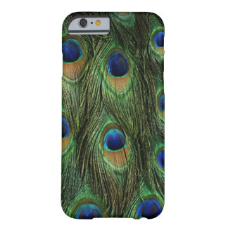 Pfau-Feder-Kasten-Abdeckung Barely There iPhone 6 Hülle