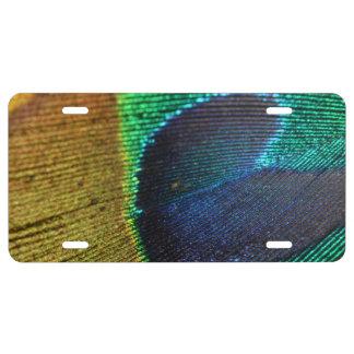 Pfau-Feder-metallisches Shimmery Goldblaues Grün US Nummernschild
