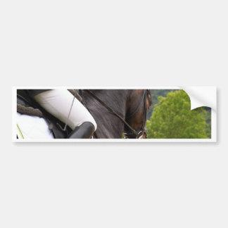 Pferd am Errichten Autoaufkleber