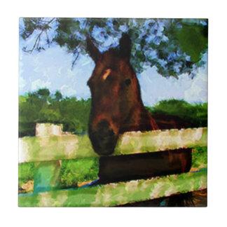 Pferd freundlich keramikfliese