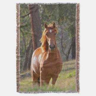 Pferd im Holz Decke