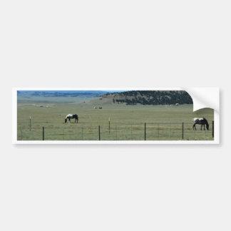 Pferde auf dem Gebiet mit Bergen Autoaufkleber