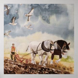 Pferde, die Wasserfarbe pflügen Poster