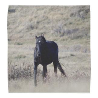 PferdeBandana Halstücher