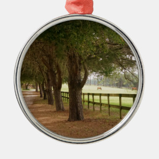 Pferdeweg Rundes Silberfarbenes Ornament
