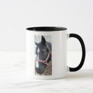 PferdeWhisperer Tasse