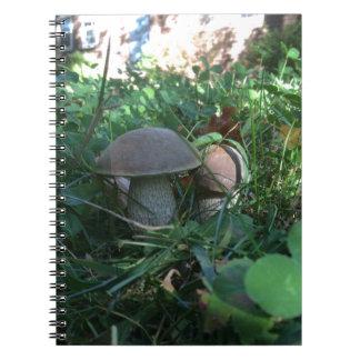 Pilze Spiral Notizbücher