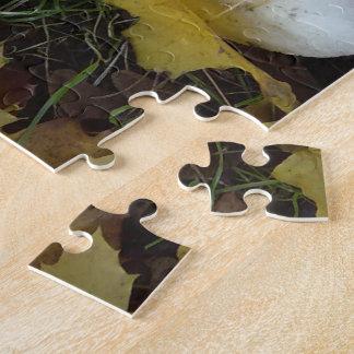 Pilzpuzzlespiel Jigsaw Puzzles