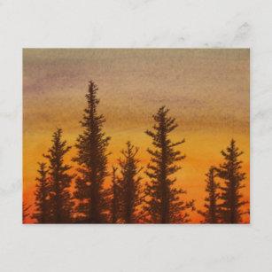 Pinetree Sonnenuntergang