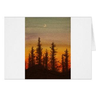Pinetree Sonnenuntergang Karte