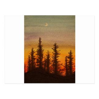 Pinetree Sonnenuntergang Postkarte