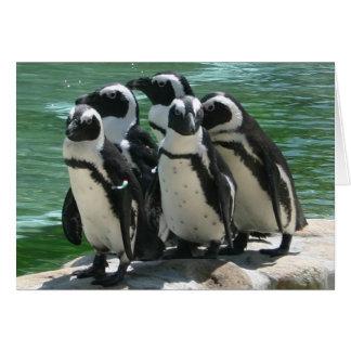 Pinguin-Gruß-Karte Grußkarte