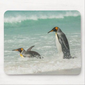 Pinguine, die auf dem Strand schwimmen Mauspads