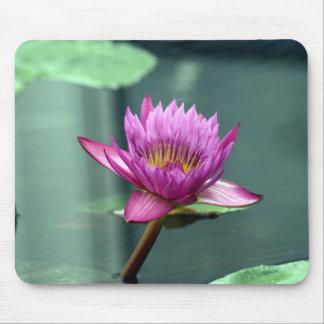 Pink-Wasser-Lilie Mauspad