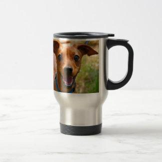 Pinscher-lächelnder blauer Kragen-Hund Edelstahl Thermotasse