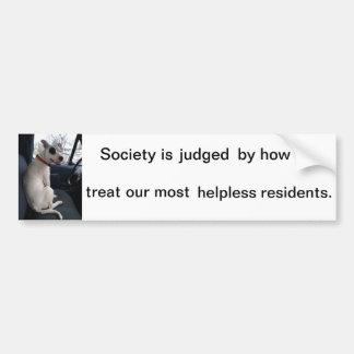 Pitbull, Hund, schützen sich, Tier, Rechte, Autoaufkleber