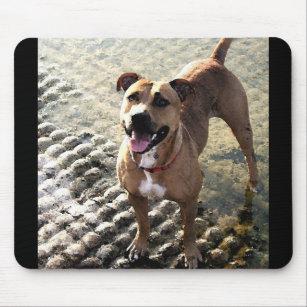 Pitbull Terrier Mousepad