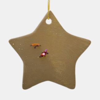 PLATYPUS U. NATIONALPARK AUSTRALIEN DER KERAMIK Stern-Ornament