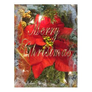 Poinsettias MC-fertigen besonders an Postkarte