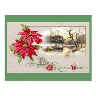 Poinsettias und winterliche Vignetten-Vintages Postkarte