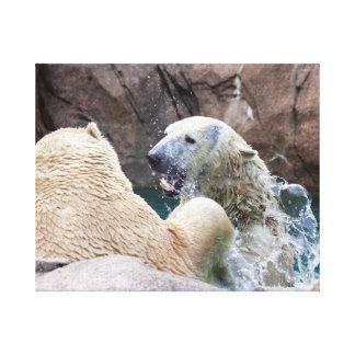 Polare Bären Roughhousing im Wasser-Leinwand-Druck Leinwanddruck