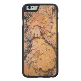 Ponderosa Kiefernbarke, Washington Carved® iPhone 6 Hülle Ahorn