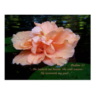 Postkarte der Psalm-23
