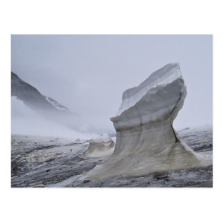 Postkarte Juneau Icefield