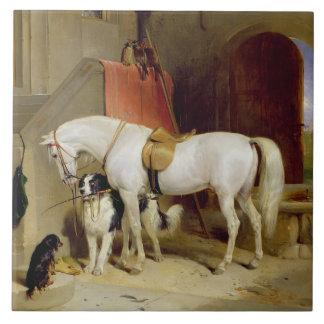 Prinz Georges Favourites (Öl auf Leinwand) Große Quadratische Fliese
