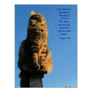 Psalm-19:1 Engels-Katze Meme Poster