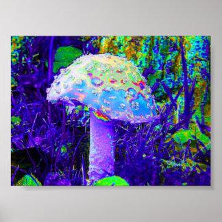 psychedelischer Pilz Poster