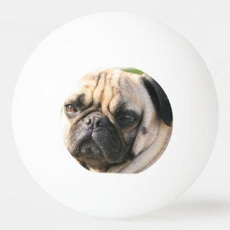 pug-18 tischtennis ball