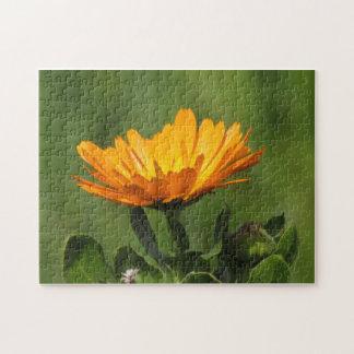Puzzlespiel - Calendula-Blüte