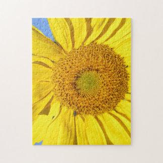 Puzzlespiel - Fliege auf Sonnenblume