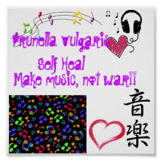 Pv-Musikplakat Poster