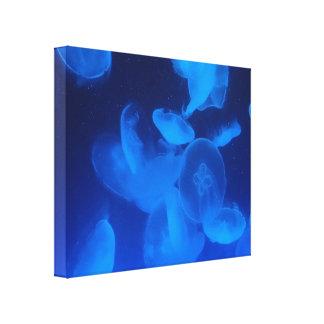 Quallen im Blau Leinwanddruck