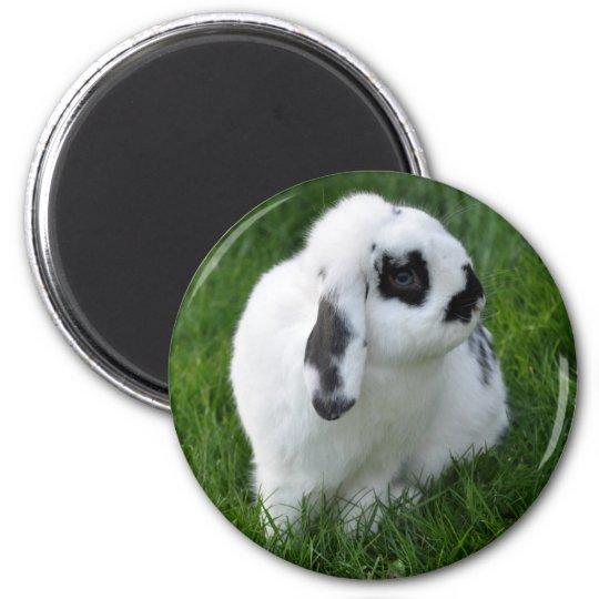 Rabbit Magnet Runder Magnet 5,1 Cm