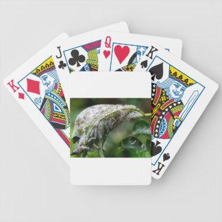 Raupen-Luken-Kokon-Regen-Fall Bicycle Spielkarten