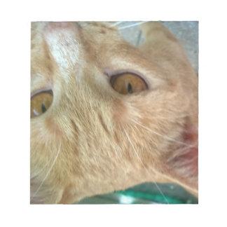 Red Cat Selfie Memo Notizblöcke