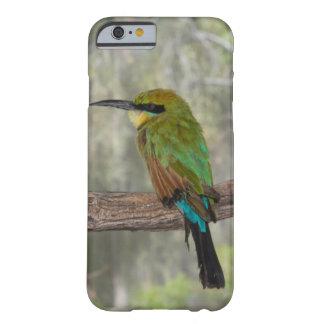 Regenbogen Bieneesser Vogel, Australien Barely There iPhone 6 Hülle