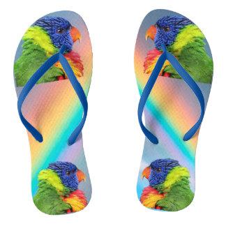 Regenbogen Lorikeet Flip Flops