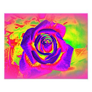 Regenbogen-Rosen-abstrakter Foto-Druck Fotodruck