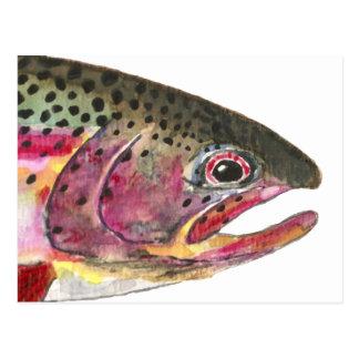 Regenbogenforelle-Fische Postkarten