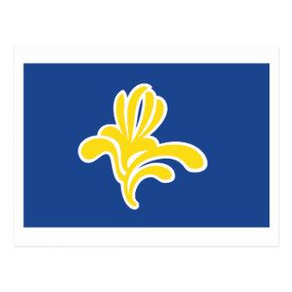 Region von Brüssel-Flagge Postkarte
