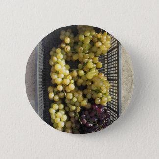 Reife Trauben im Kasten Runder Button 5,1 Cm