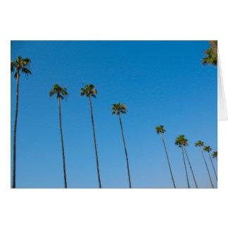 Reihe der Palmen Karte