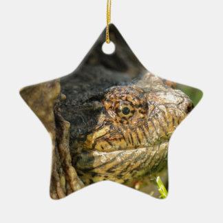 Reißende Schildkröte Keramik Stern-Ornament
